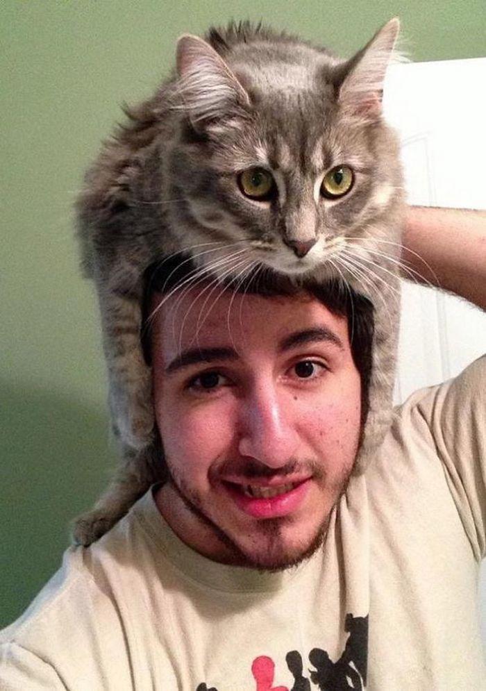 Tendência de moda mais recente: Gatos como chapéus (21 fotos) 22