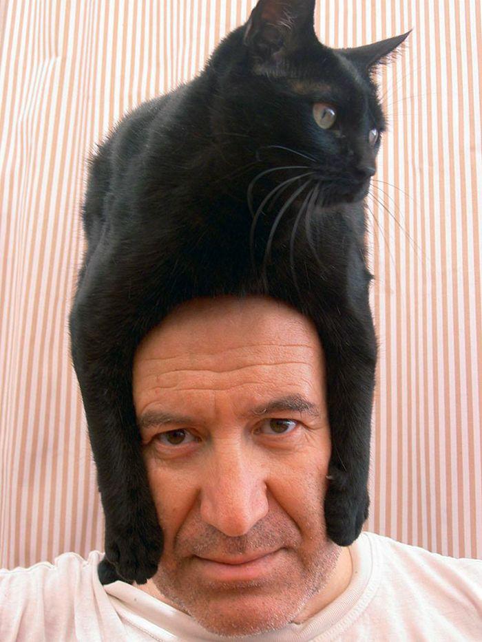 Tendência de moda mais recente: Gatos como chapéus (21 fotos) 23