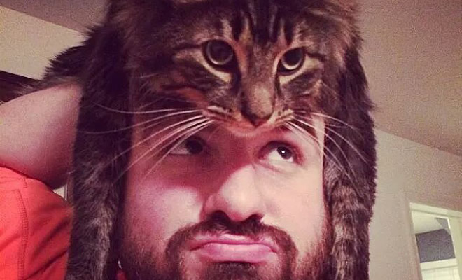 Tendência de moda mais recente: Gatos como chapéus (21 fotos) 1
