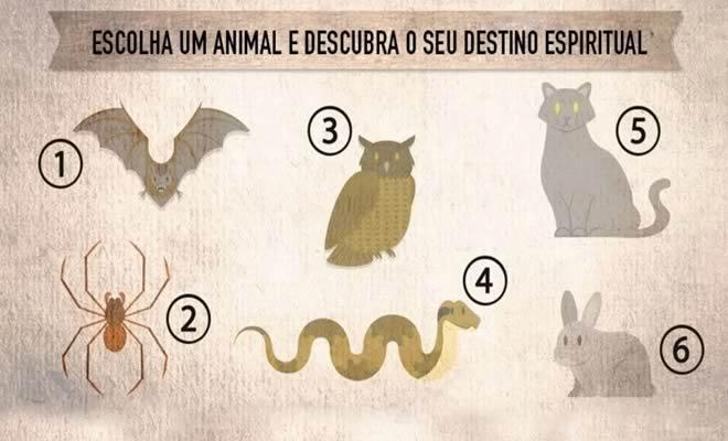 Escolha um animal e descubra o seu destino espiritual