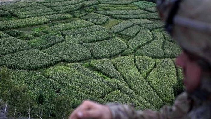 20 labirintos deslumbrantes pelo mundo 19