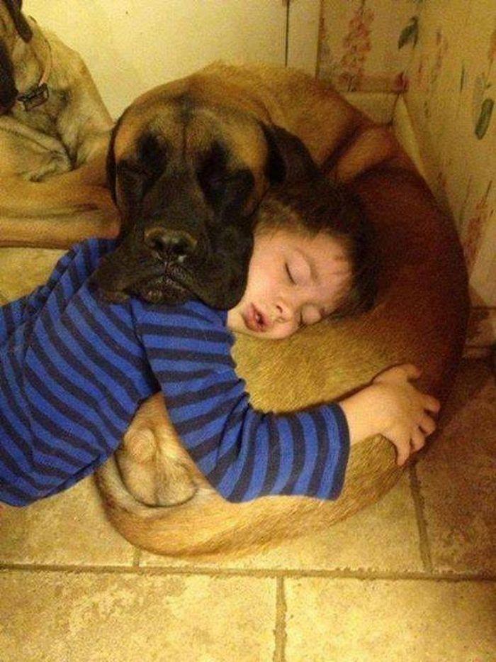 20 pessoas com seus animais que demonstra todo o seu amor 11