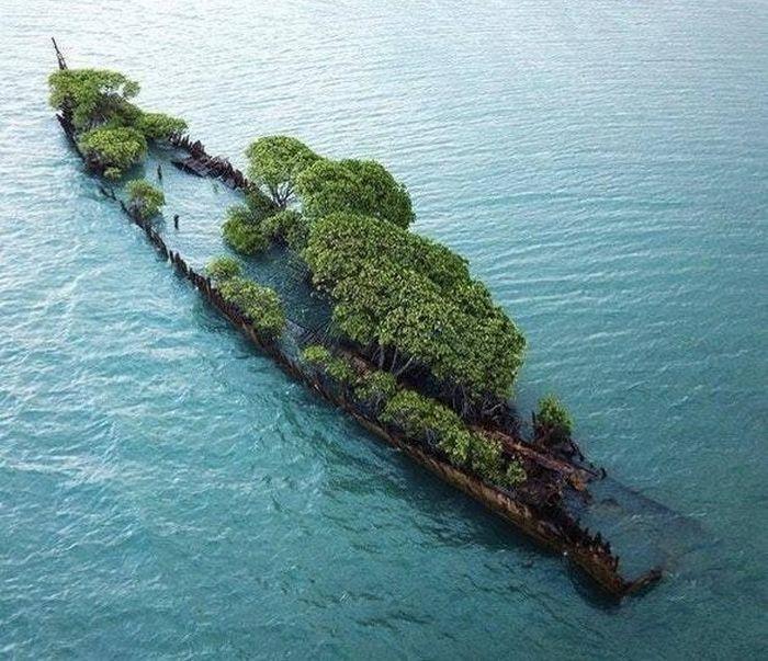 20 vezes que a natureza fez o mundo se curvar diante dele 13
