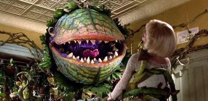 24 filmes para você assistir no Halloween 24