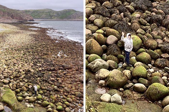 21 fotos que mostra maneira mais simples de ilustrar a diferença entre duas coisas 3