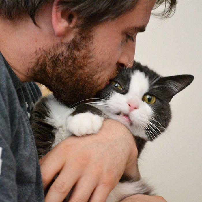 Gatos que odeiam estar em selfies com seus humanos (21 fotos) 2