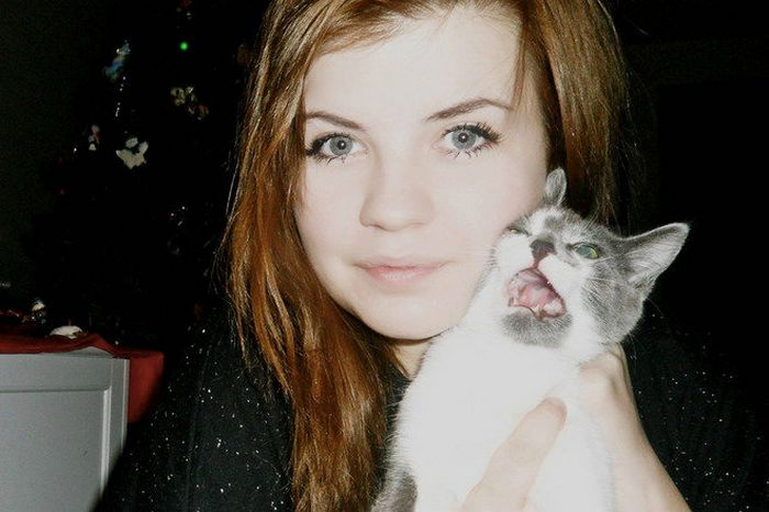 Gatos que odeiam estar em selfies com seus humanos (21 fotos) 17