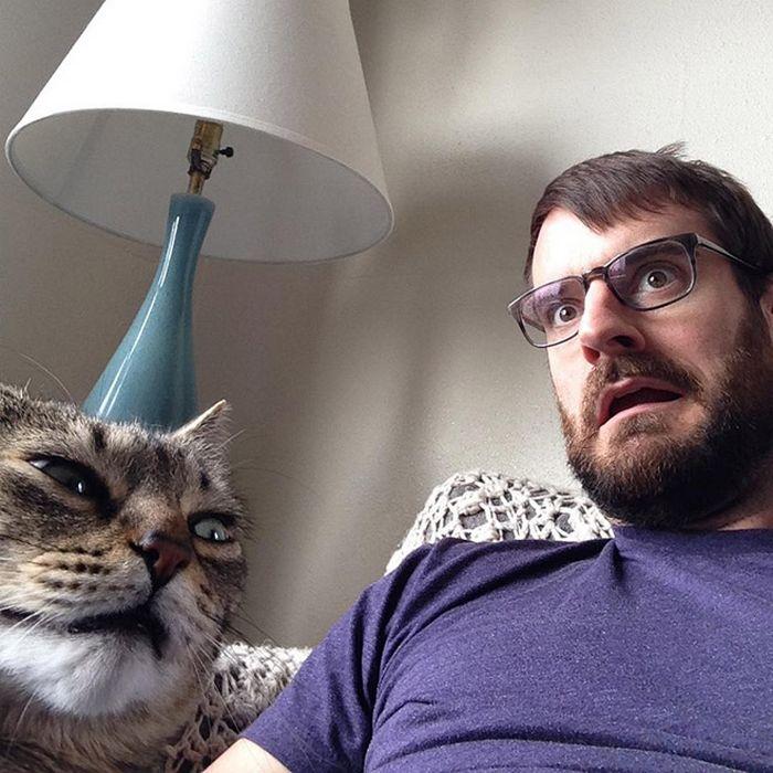 Gatos que odeiam estar em selfies com seus humanos (21 fotos) 20
