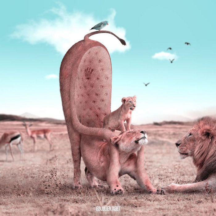 Aqui está como eu imagino que os animais se comportam quando você não está olhando (25 fotos) 22