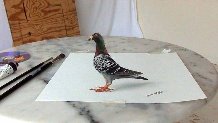 Artista alemão cria desenhos 3D incríveis em papel (30 fotos) 21
