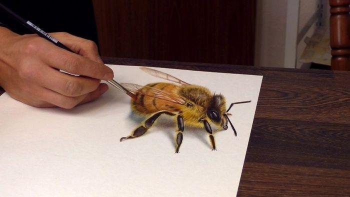 Artista alemão cria desenhos 3D incríveis em papel (30 fotos) 22
