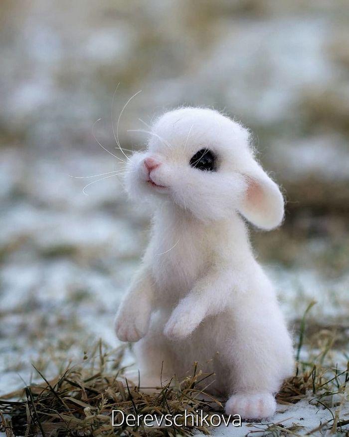 Artista russo criar animais de lã feltrada que são uma fofura (25 fotos) 8