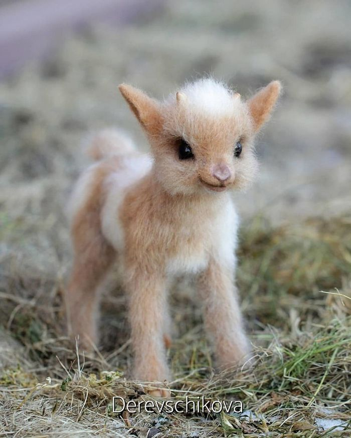 Artista russo criar animais de lã feltrada que são uma fofura (25 fotos) 16