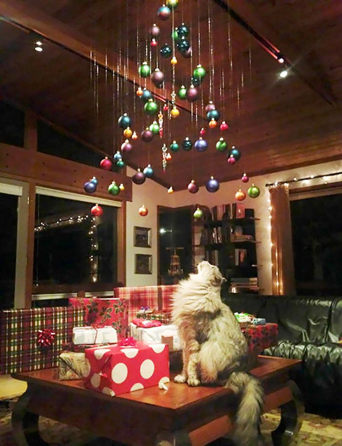 21 dicas genias de como proteger sua árvore de Natal dos animais de estimação 12