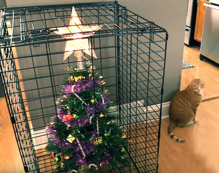 21 dicas genias de como proteger sua árvore de Natal dos animais de estimação 13
