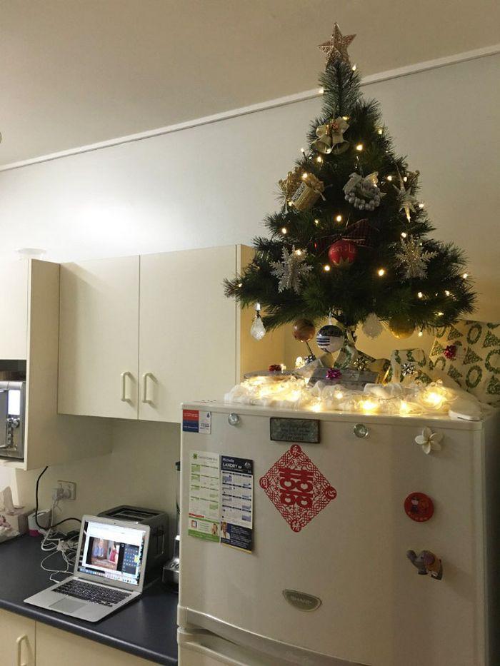 21 dicas genias de como proteger sua árvore de Natal dos animais de estimação 21