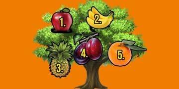 Escolha uma fruta da sorte e seu desejo se tornarão realidade