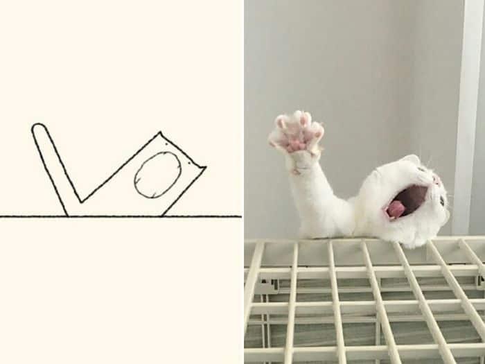 21 desenhos de gato realmente precisos 2