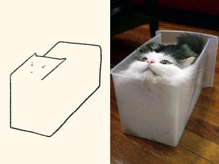 21 desenhos de gato realmente precisos 3