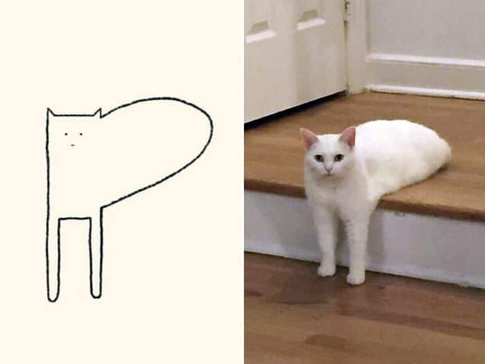 21 desenhos de gato realmente precisos 4