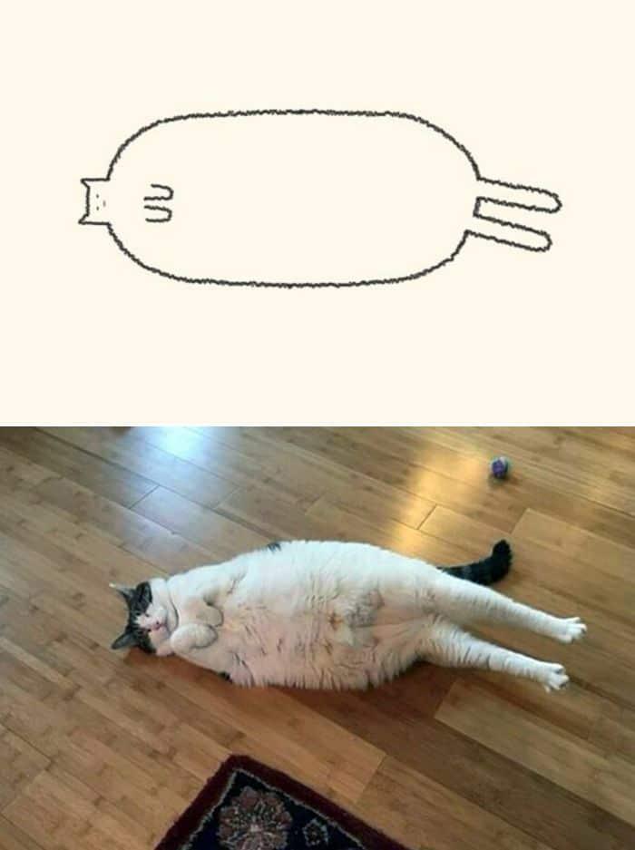21 desenhos de gato realmente precisos 6