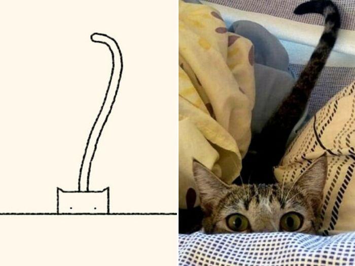 21 desenhos de gato realmente precisos 7