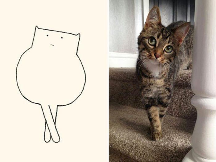 21 desenhos de gato realmente precisos 8