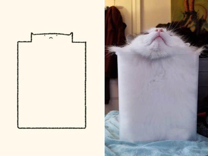 21 desenhos de gato realmente precisos 9