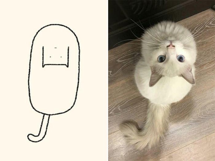 21 desenhos de gato realmente precisos 13