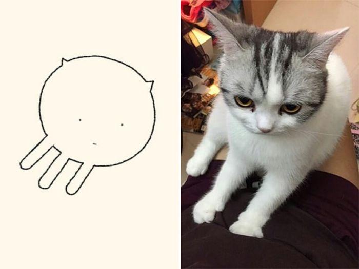 21 desenhos de gato realmente precisos 14