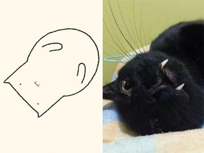 21 desenhos de gato realmente precisos 15