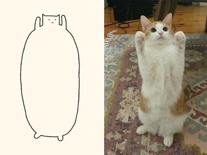 21 desenhos de gato realmente precisos 18