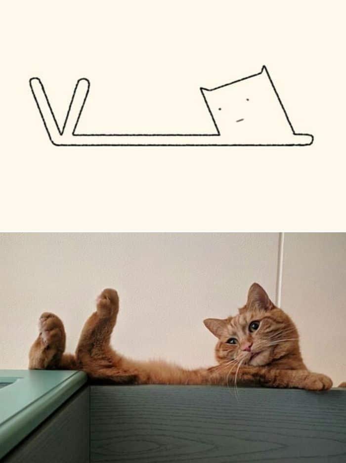 21 desenhos de gato realmente precisos 19