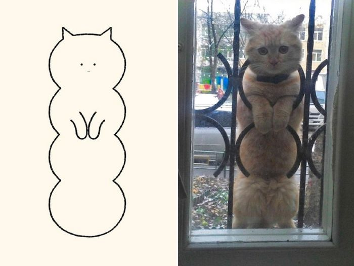 21 desenhos de gato realmente precisos 21