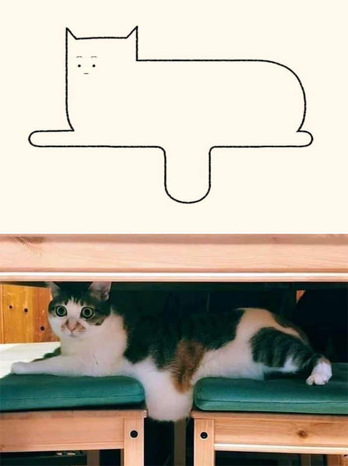 21 desenhos de gato realmente precisos 22