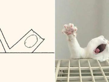 21 desenhos de gato realmente precisos 43