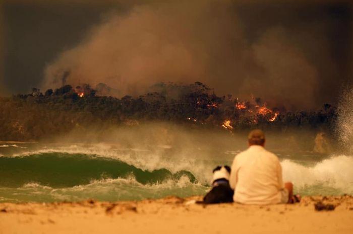 36 imagens que mostram os horrores dos incêndios na Austrália 3