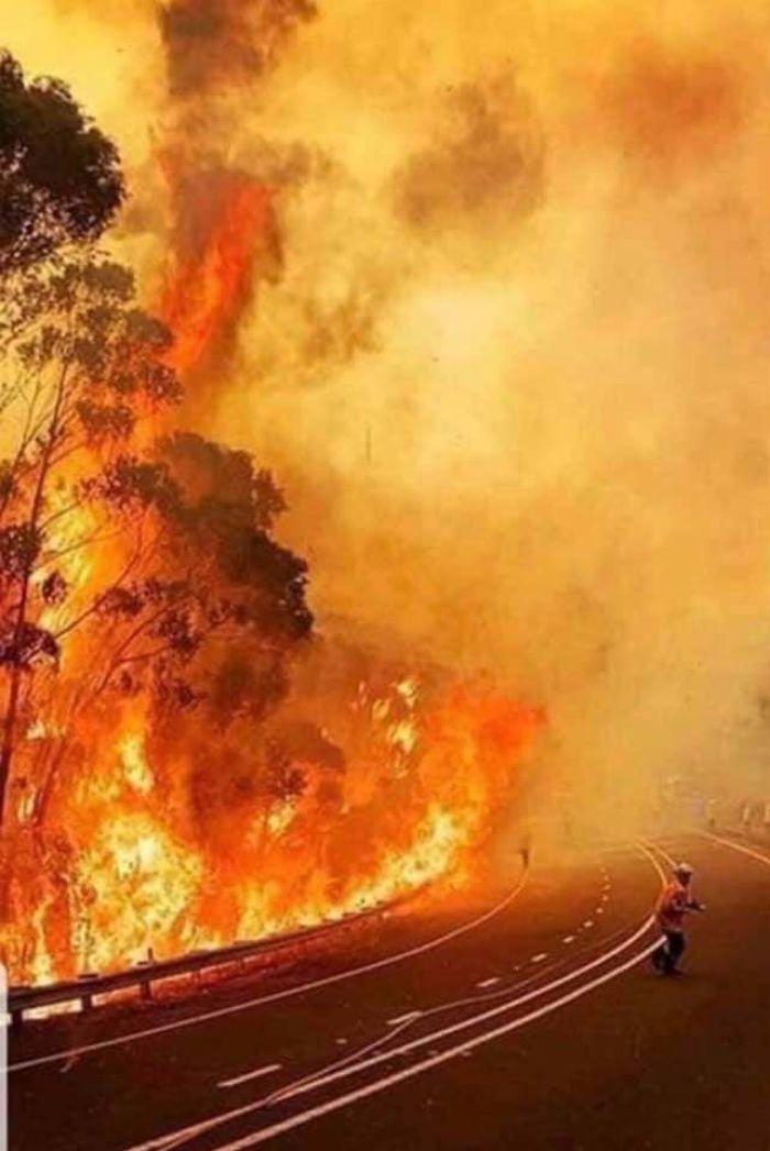 36 imagens que mostram os horrores dos incêndios na Austrália 7