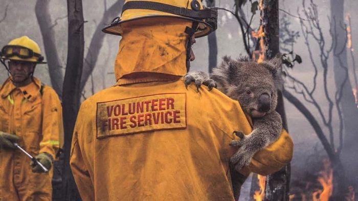 36 imagens que mostram os horrores dos incêndios na Austrália 14