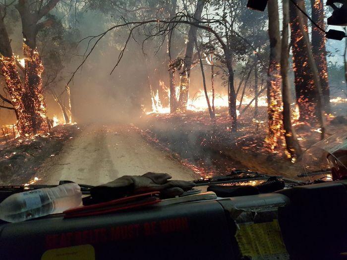 36 imagens que mostram os horrores dos incêndios na Austrália 20