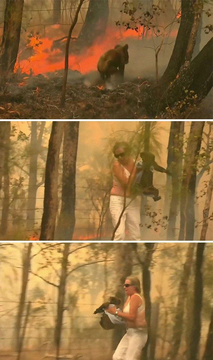 36 imagens que mostram os horrores dos incêndios na Austrália 33