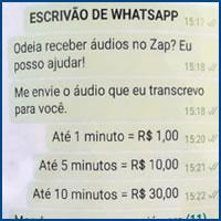 Da série: Empreendedorismo brasileiro
