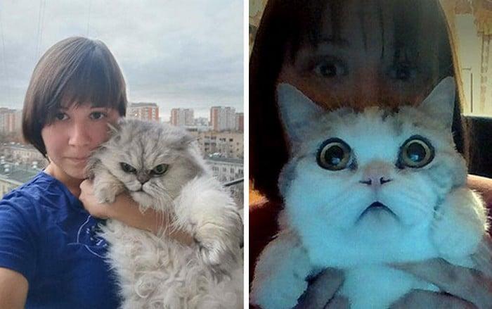 Alguém está imaginado como tudo seria se tivesse a cara de um gato e o resultado é perturbador (40 fotos) 2