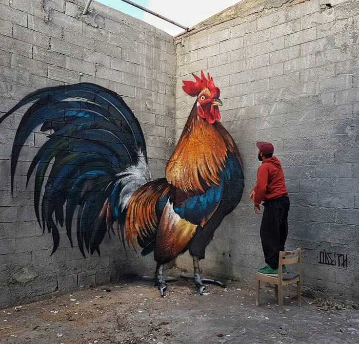 21 fotos de magníficas obras de arte de rua que mereciam ser fotografadas 12