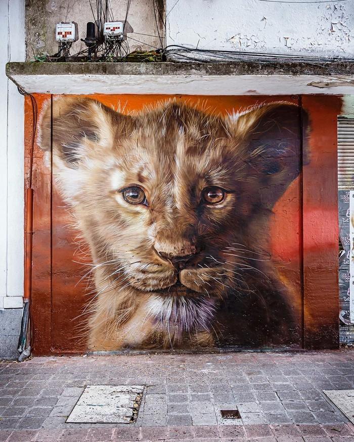 21 fotos de magníficas obras de arte de rua que mereciam ser fotografadas 15