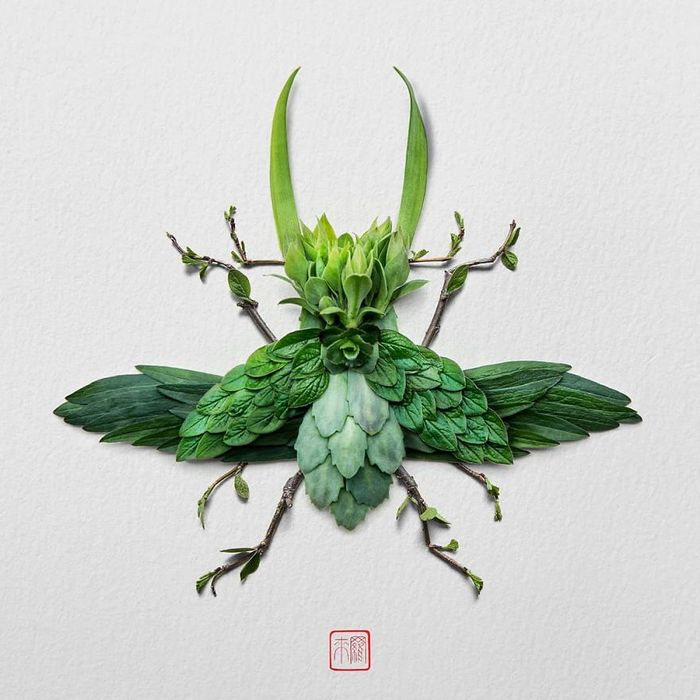 37 retratos delicados de animais criados a partir de coisas encontradas na natureza por Raku Inoue 9