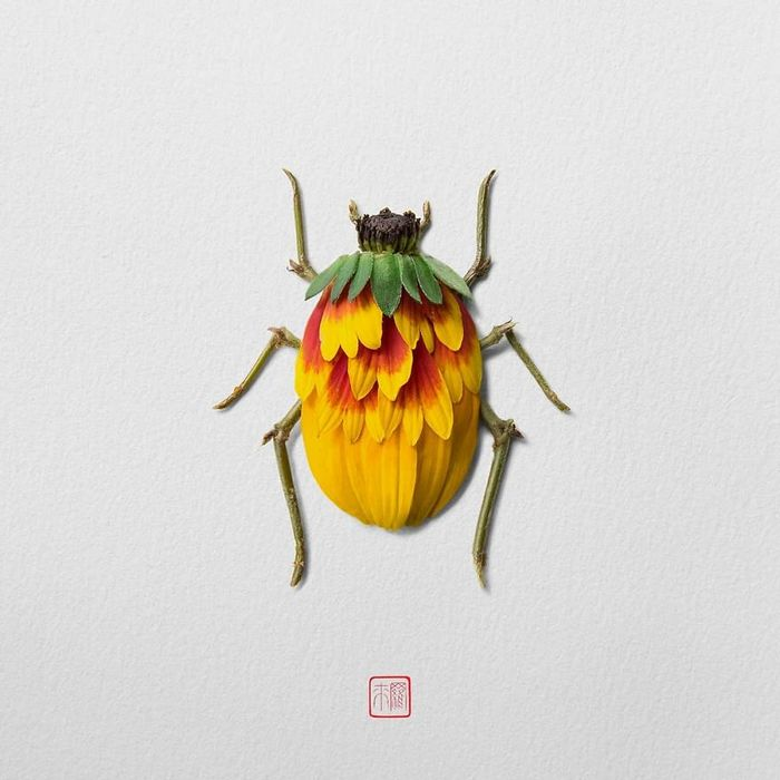 37 retratos delicados de animais criados a partir de coisas encontradas na natureza por Raku Inoue 13