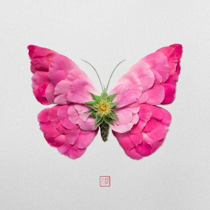 37 retratos delicados de animais criados a partir de coisas encontradas na natureza por Raku Inoue 15