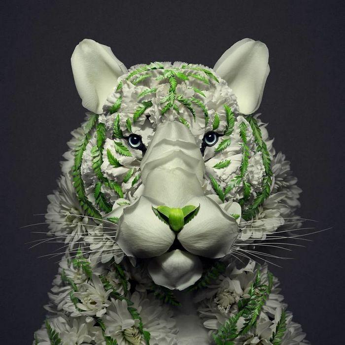 37 retratos delicados de animais criados a partir de coisas encontradas na natureza por Raku Inoue 17