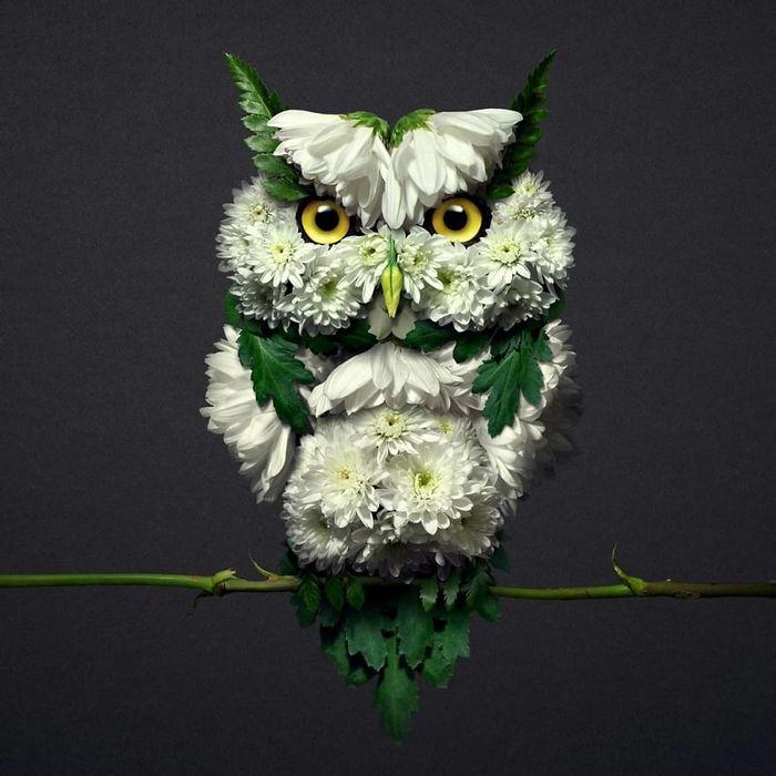 37 retratos delicados de animais criados a partir de coisas encontradas na natureza por Raku Inoue 18